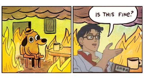 the world is on fire meme